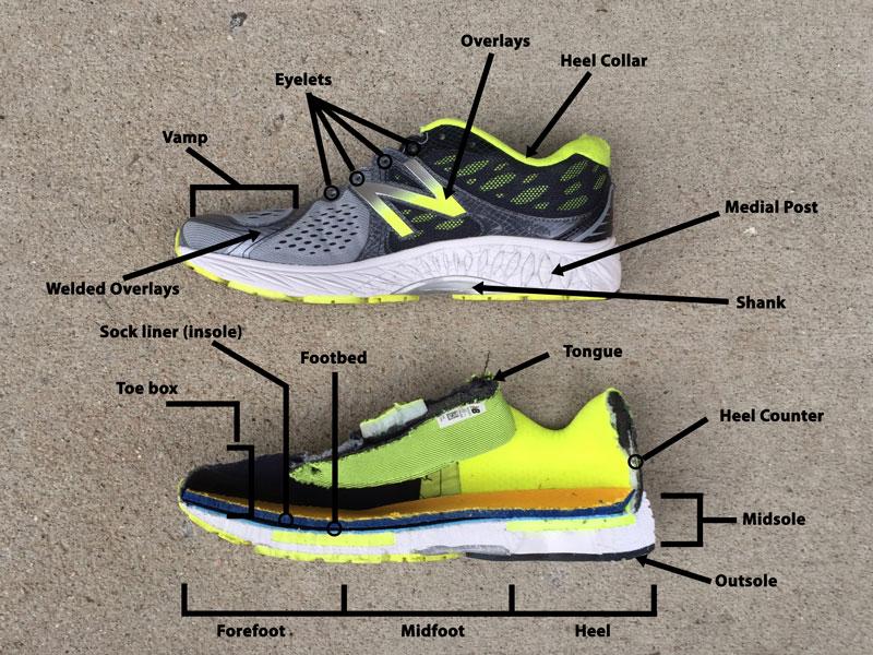 Running shoe anatomy